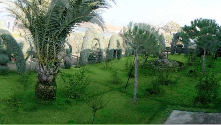 jardines para que nuestros residentes disfruten del aire libre en la comunidad de Castilla-La Mancha