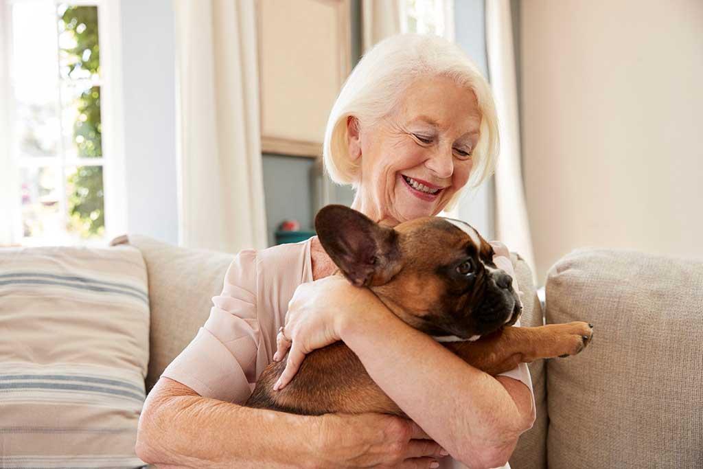 animales de compañia para mayores mujer y perro