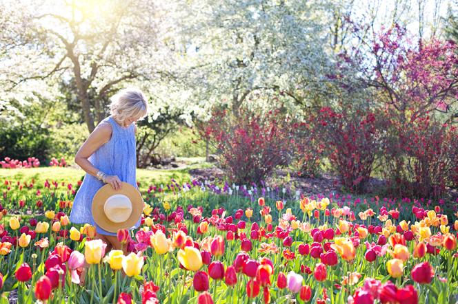 Primavera y alergias en ancianos